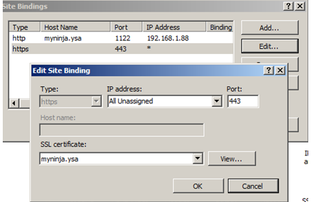 IIS Server SSL binding