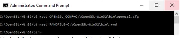 openssl variables